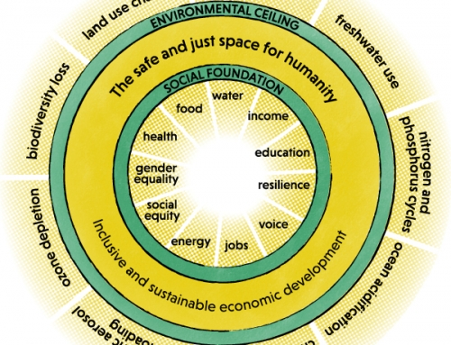 Blog 5 | Lieve | Doughnut Economics and Education